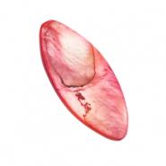 Schelp kraal ovaal light ruby red