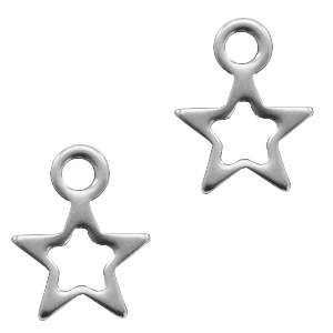 Stainless steel bedel open ster klein zilver