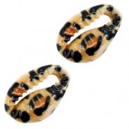 Kauri schelp open leopard brown