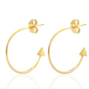 Stainless steel oorbellen creolen goud