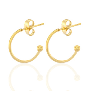 Stainless steel oorbellen creolen klein goud