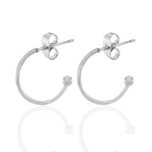 Stainless steel oorbellen creolen klein zilver