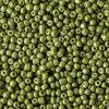 Rocailles 2mm calliste green